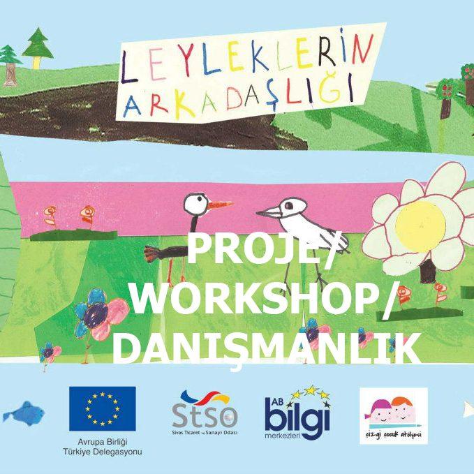 Proje/workshop/Danışmanlık